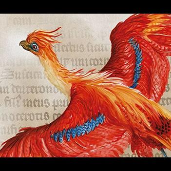 Sárkánycsont és seprűnyél - online Harry Potter-kiállítás